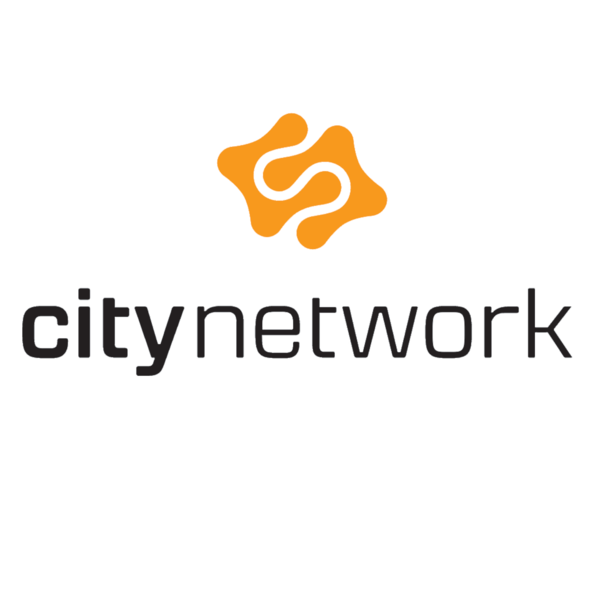 CITYNETWORK-min.png